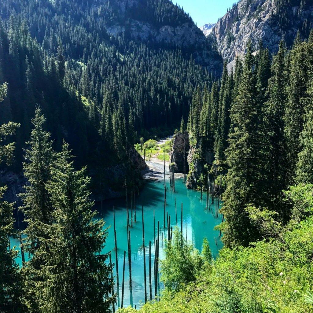 Медовый месяц в Алматы, отдых в алматы, лесная сказка, горнолыжный курорт, свадьба в Алматы, спа-салон в горах,